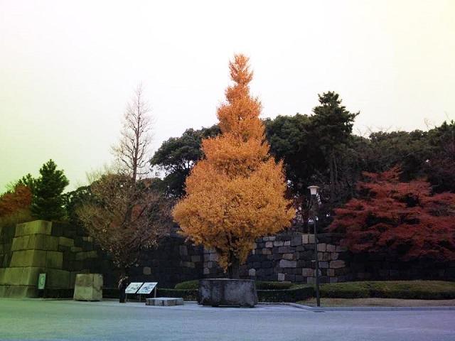 jardines_palacio_imperial