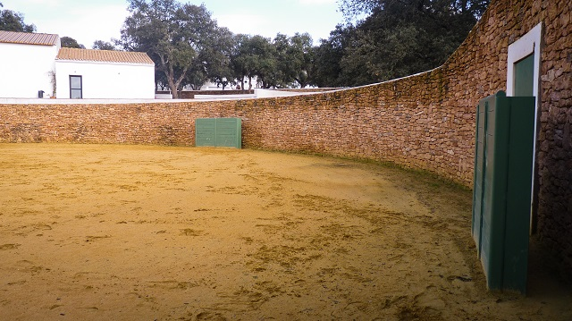 plaza-tientas